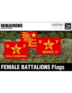 1/100 Female Battalions flags