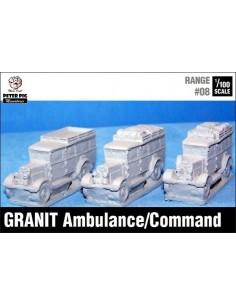 1/100 Ambulància Granit