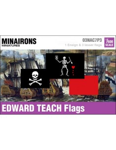 1/600 Edward Teach pirate flags