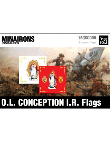 1/100 Our Lady of Conception IR flags